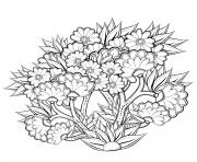 fleurs nature ete abstrait adulte dessin à colorier