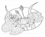 magnifique fleurs lotus dessin à colorier