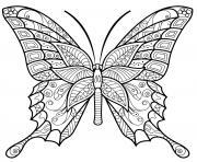 insecte papillon jolis motifs dessin à colorier