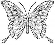 papillon insecte jolis motifs 6 dessin à colorier