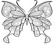 papillon insecte jolis motifs 8 dessin à colorier