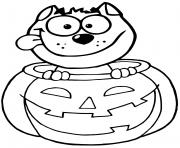 chat noir interieur citrouille dessin à colorier
