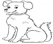 chien adulte magnifique dessin à colorier