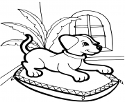 chiot de 18 mois sur son lit dessin à colorier