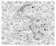 paon oiseau symbole de fertilite et immortalite en inde dessin à colorier