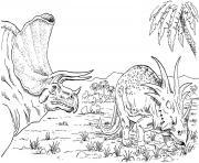 deux triceratops dinosaures herbivores dessin à colorier