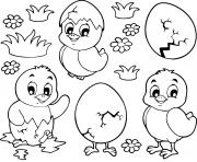 poussins et oeufs paques maternelle dessin à colorier