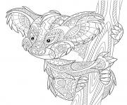 Coloriage koala australie zentangle antistress