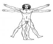 leonard de vinci l homme de vitruve 1492 dessin à colorier