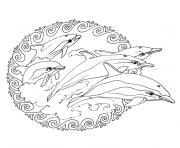 mandala simple avec des dauphins dessin à colorier
