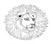 Coloriage mandala simple lion sauvage