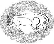 Buffalo Mandala Par Lesya Adamchuk dessin à colorier