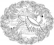 Aigle Mandala Par Lesya Adamchuk dessin à colorier