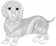 chien saucisse dachshund teckel mandala animaux dessin à colorier