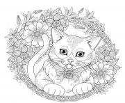 chat mandala avec fleurs et roses dessin à colorier