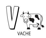 lettre v comme vache dessin à colorier