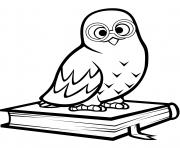hibou polaire assis sur un livre dessin à colorier