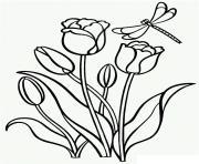 Coloriage disney daisy tulipes dessin