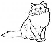 Originaire de la France le chat sacre de Birmanie possede un poil mi long et des pieds d un blanc pur dessin à colorier