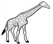 girafe mammifere de la savane africaine dessin à colorier