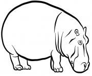 Hippopotamus dessin à colorier