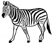 zebre espece herbivores vivant en afrique dessin à colorier