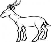 antilope dessin à colorier