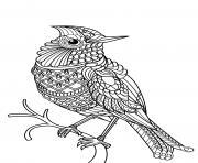 oiseau difficile adulte mandala dessin à colorier