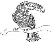 Coloriage roadrunner oiseau dessin