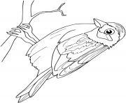 Coloriage cigogne dessin