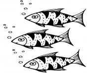 poisson Acipenseriformes dans les eaux douces du Canada dessin à colorier