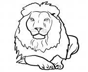 lionne animal agregaire dessin à colorier
