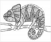 jungle cameleon sur une branche dessin à colorier