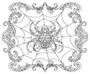 spider zentangle araignee dessin à colorier