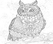 Coloriage zentangle eagle owl