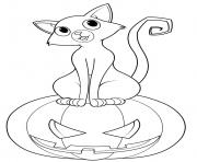 chat halloween syr une citrouille dessin à colorier