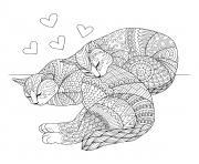 chat pour adulte difficile dessin à colorier