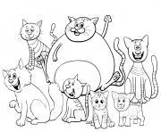 des chats et chatons de toutes tailles dessin à colorier