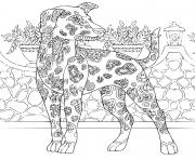 Coloriage chien du pharaon complexe antistress