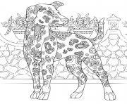 chien du pharaon complexe antistress dessin à colorier