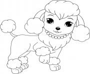 princesse caniche avec un toilettage en lion dessin à colorier