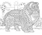 chien retriever de nouvelle ecosse mandala dessin à colorier