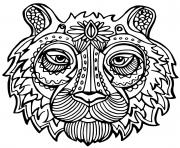 Coloriage tigre adulte felin