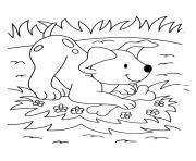 chien veut jouer avec son os et au parc dessin à colorier