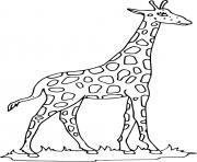girafe avec un long cou dessin à colorier
