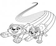 Skye et Everest Rainbow dessin à colorier