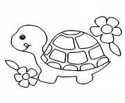 animaux pour enfants facile tortue dessin à colorier