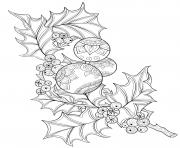 Branche de houx frais avec des babioles de Noel dessin à colorier