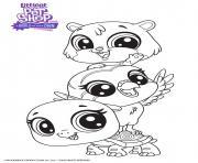 Les meilleurs amis Petshop dessin à colorier