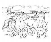 Coloriage cheval spirit et lucky dessin